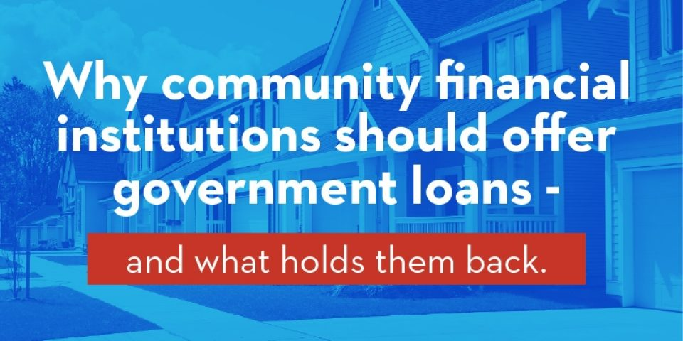 Blog Hero Government Loans 800X400