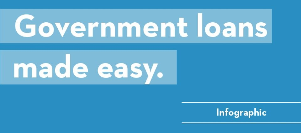 Blog Hero Government Loans Made Easy 800X400